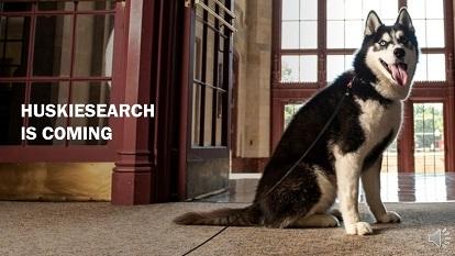 HuskieSearch